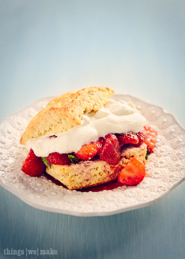 Strawberry Shortcake on things{we}make